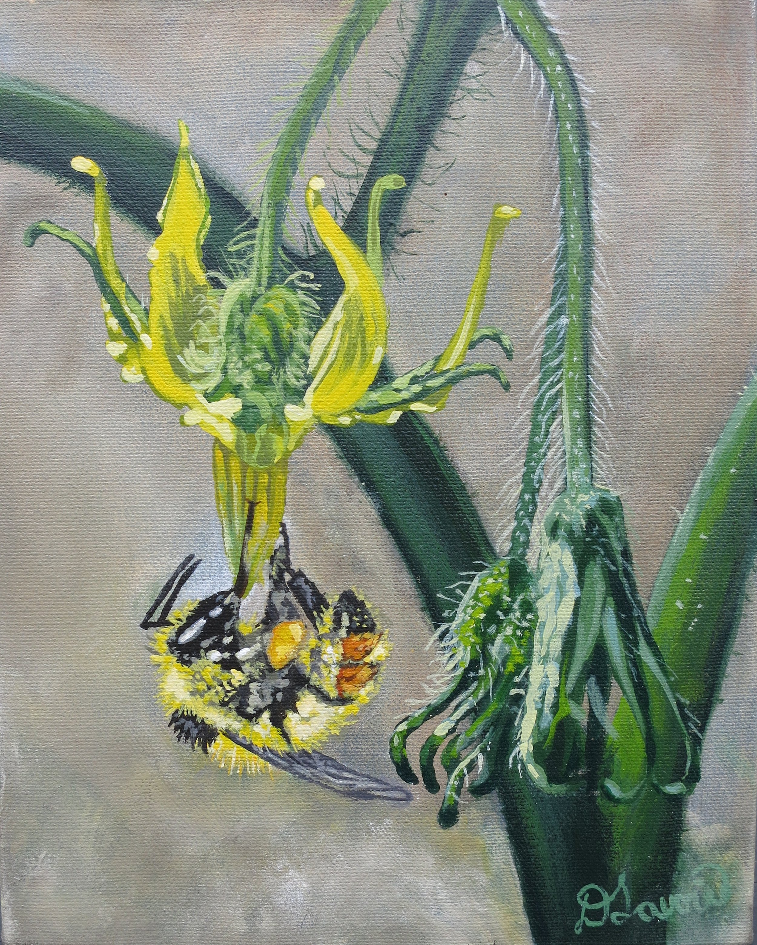 """Come to My Garden      Acrylic on Canvas - 8"""" x 10""""   Although the original has sold -limited edition prints are available.   As this bee clung dangling from the flower on my tomato plant, he seemed the poster bee for my garden pollination."""