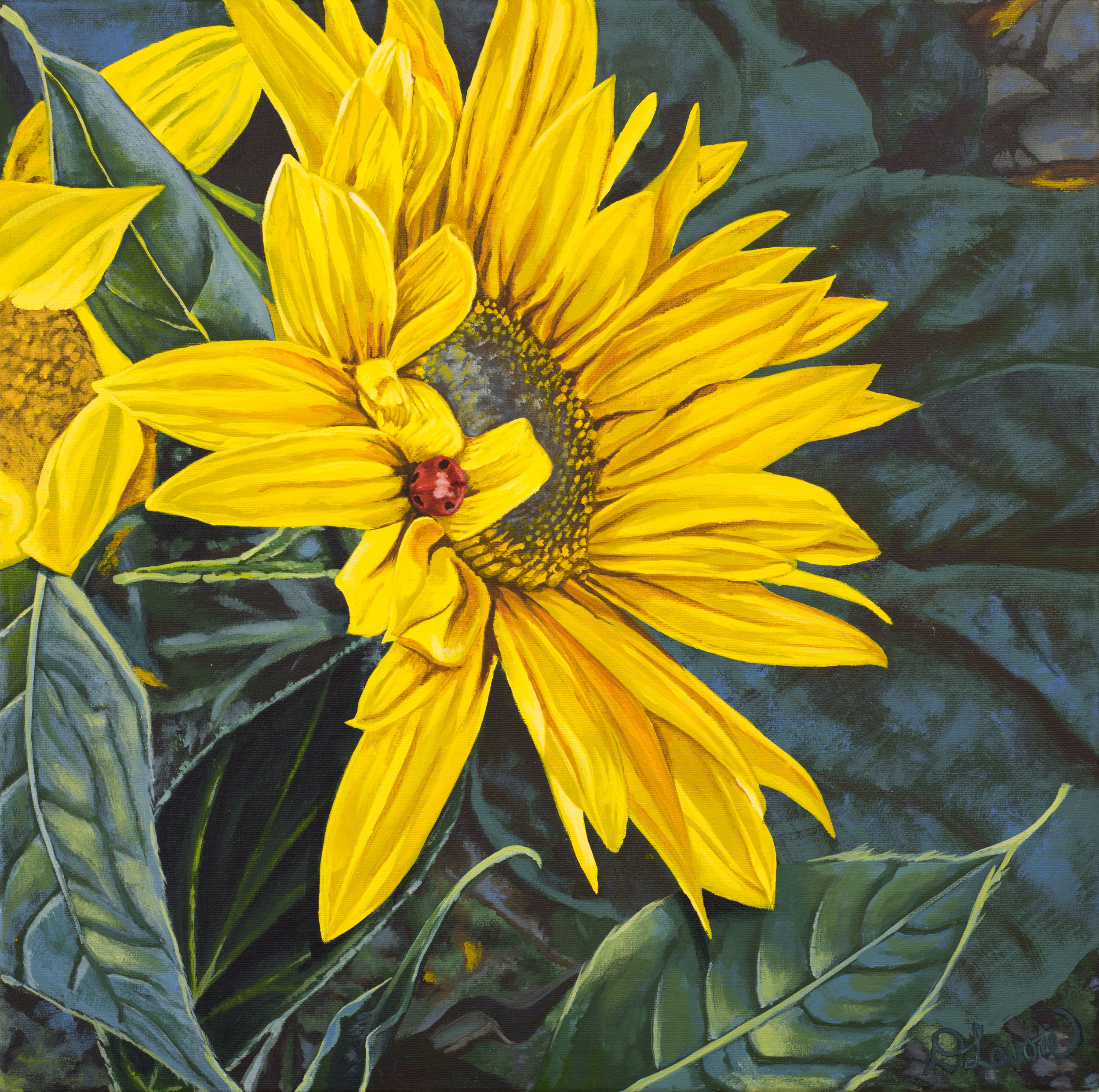 """Bugnap    Acrylic on Canvas - 18"""" x 18""""   Both the original and limited edition prints are available.   Tucked away on this dazzling sunflower, even little creatures need naps."""