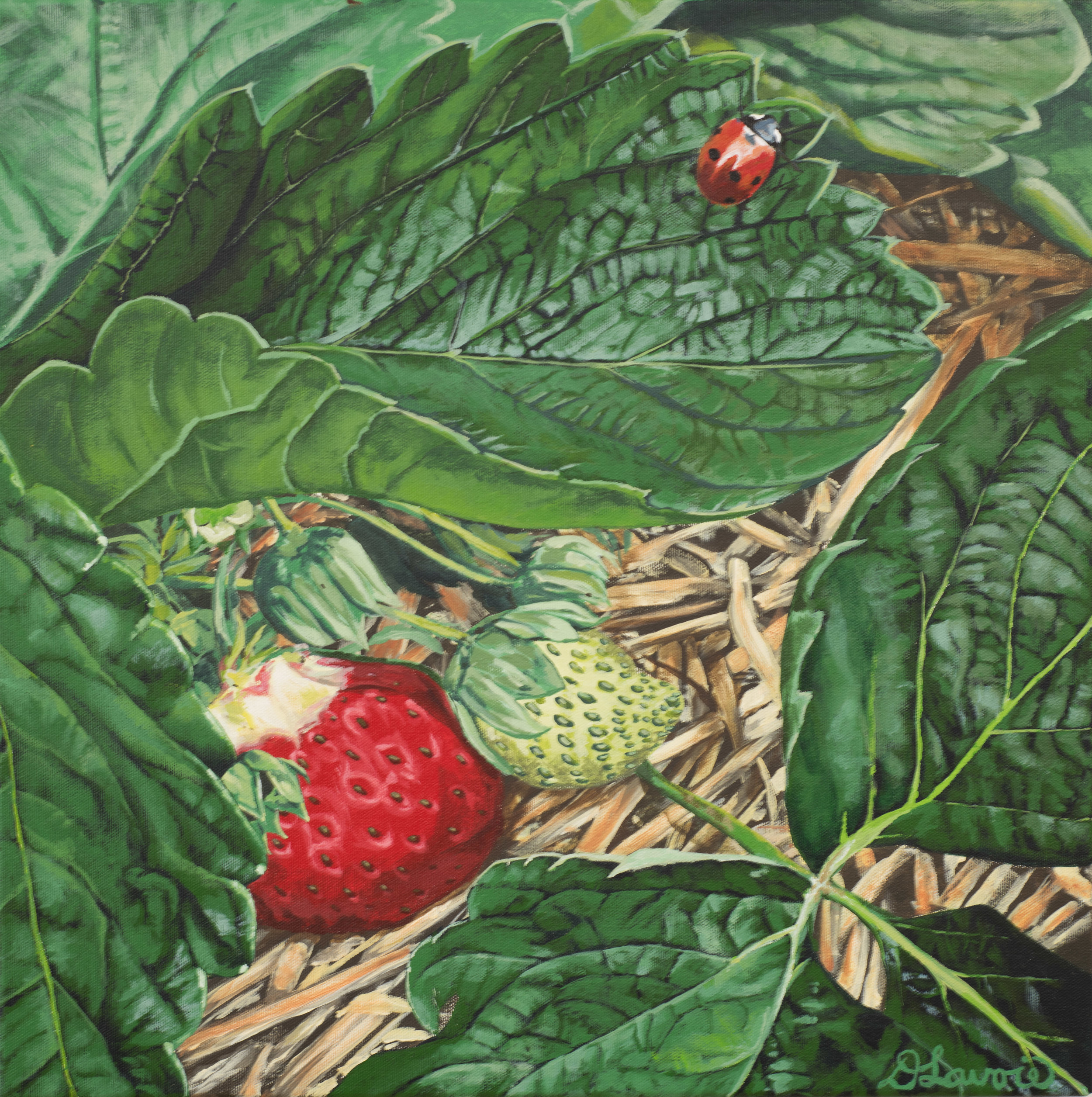 """The Garden Visitor          Acrylic on Canvas - 18"""" x 18""""   Both the original and limited edition prints are available.   Ladybugs and lush red strawberries in my garden make me smile. And that was one yummy berry!"""