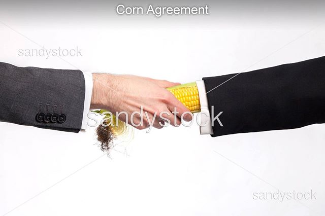 "shot some new SandyStock™️ stock photos for @vice magazine's comedy issue. This is ""Corn Agreement."""