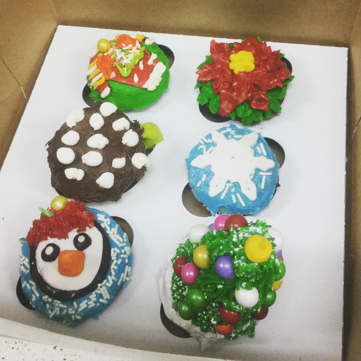 January 18th Cupcake Class