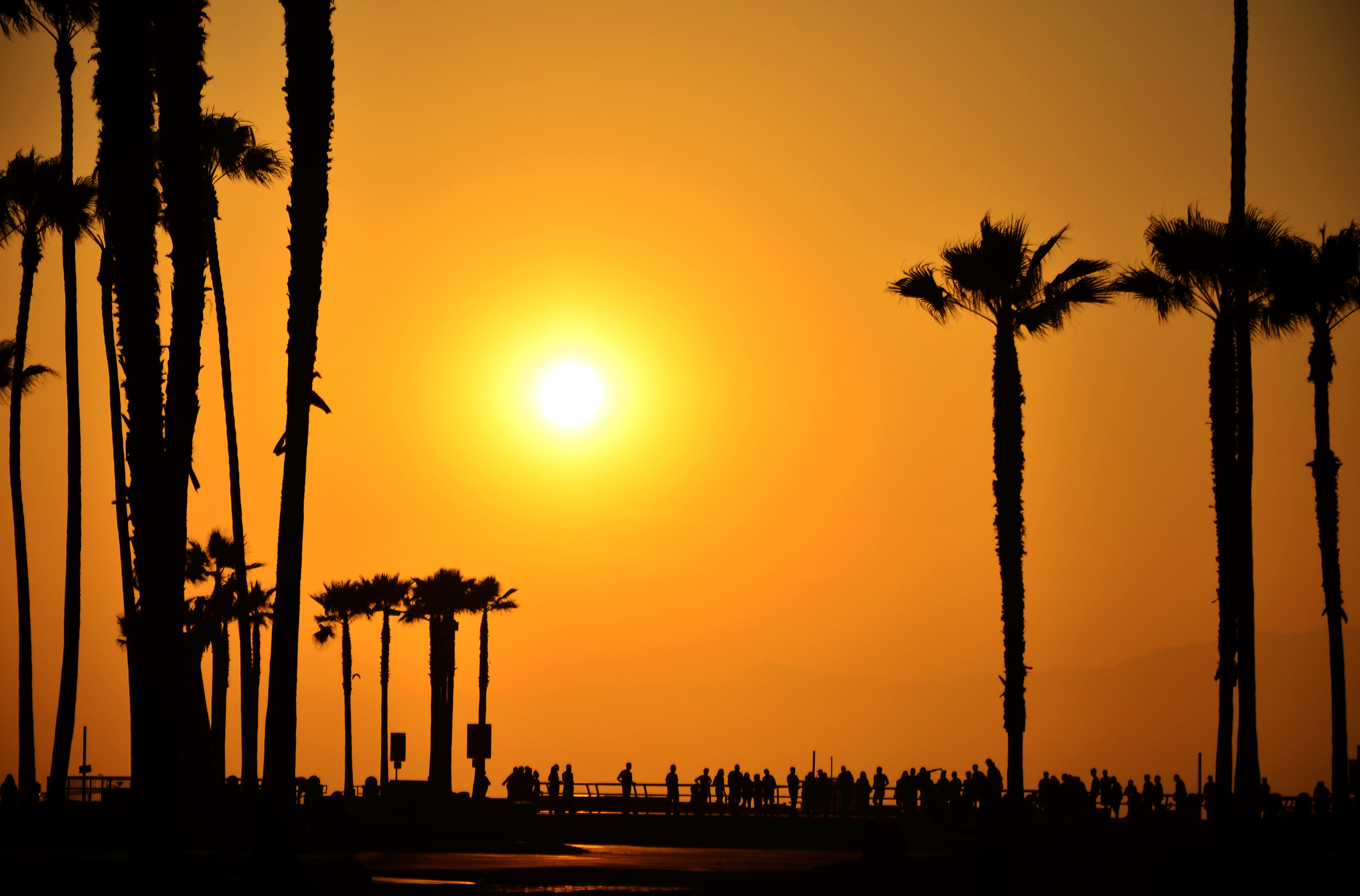 Moving To The Beach?   Learn More