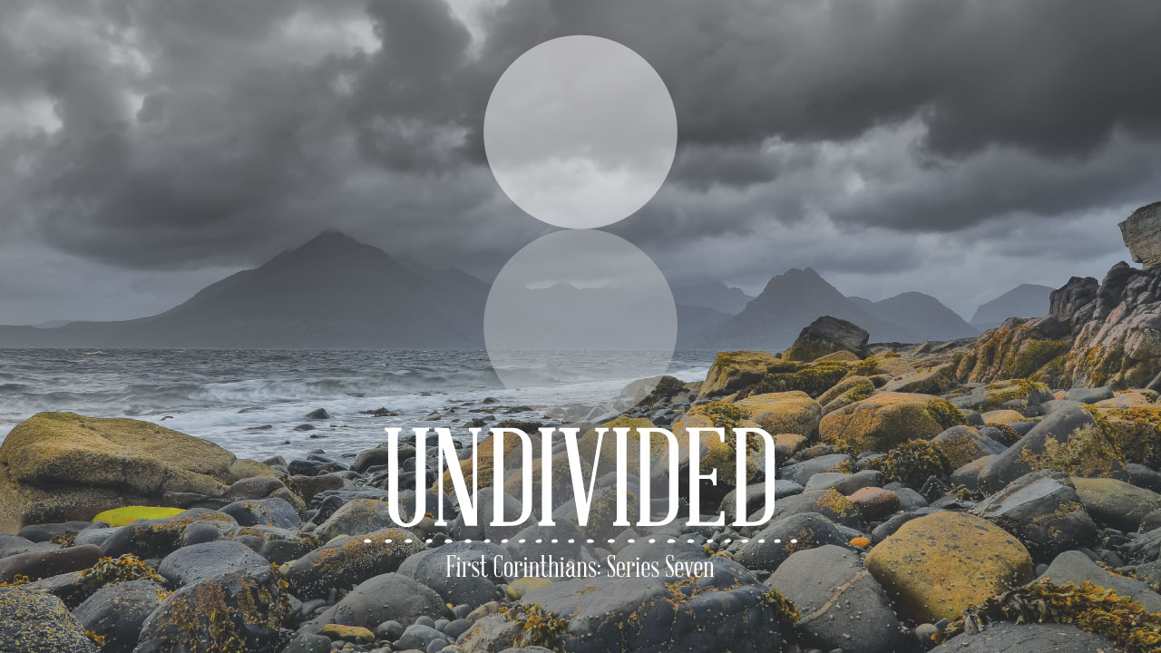 undivided-1COR_box.jpg
