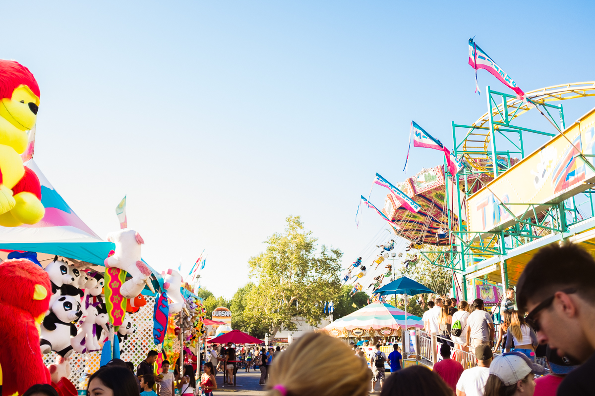 alameda-county-fair-7.jpg
