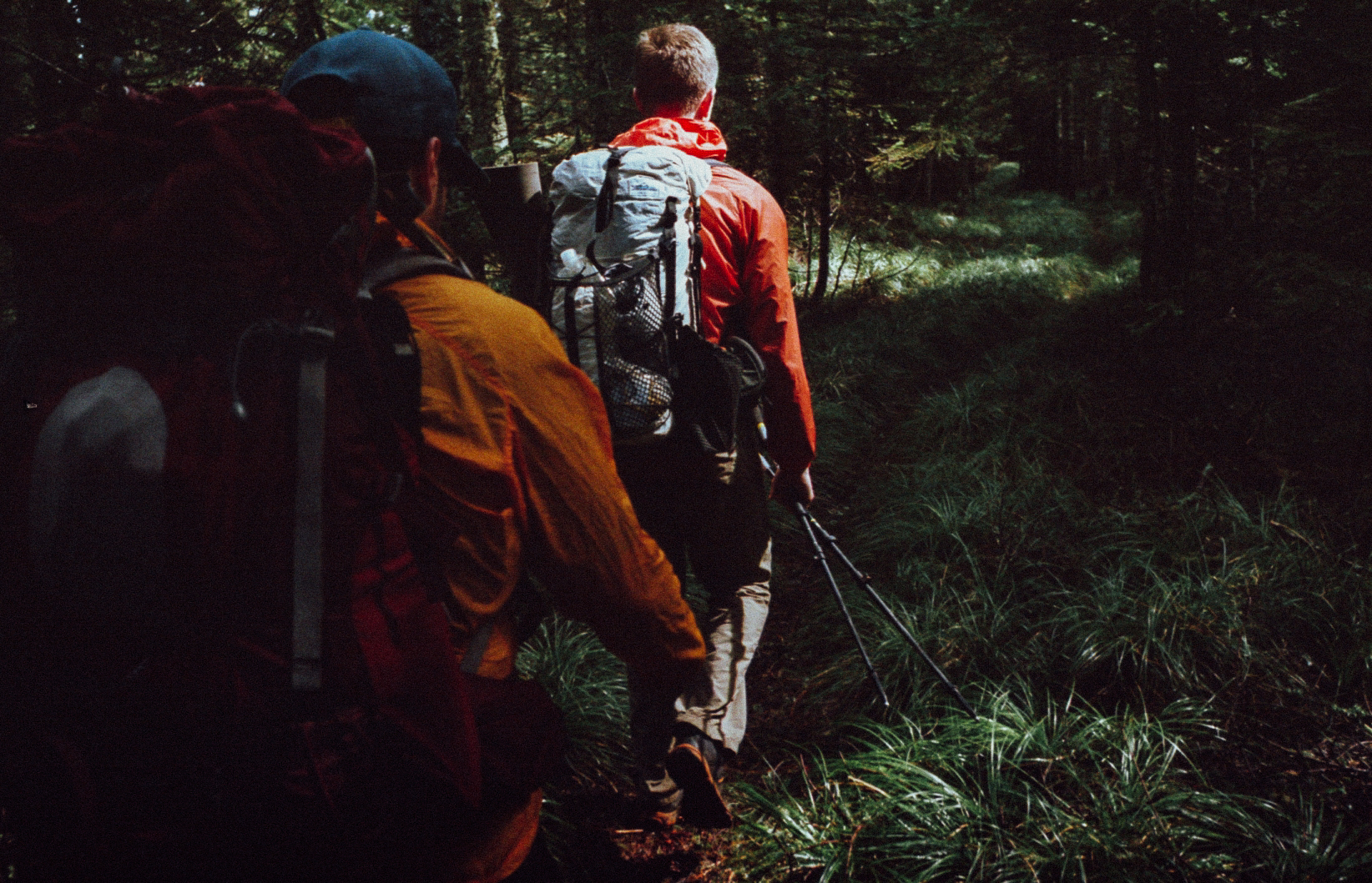 Mt Hood Backpacking, OR