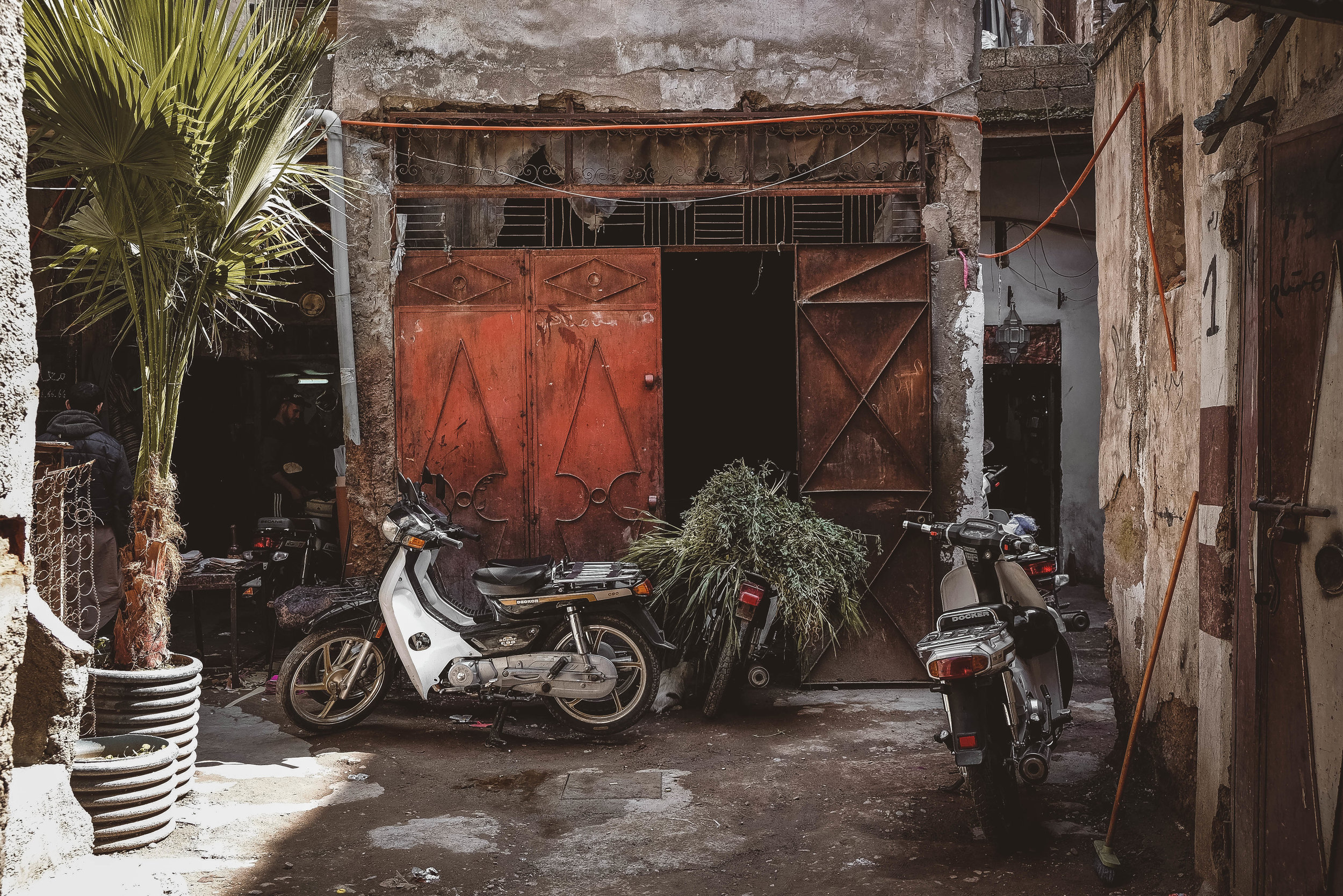 VictoriaNguyenn-250.jpg