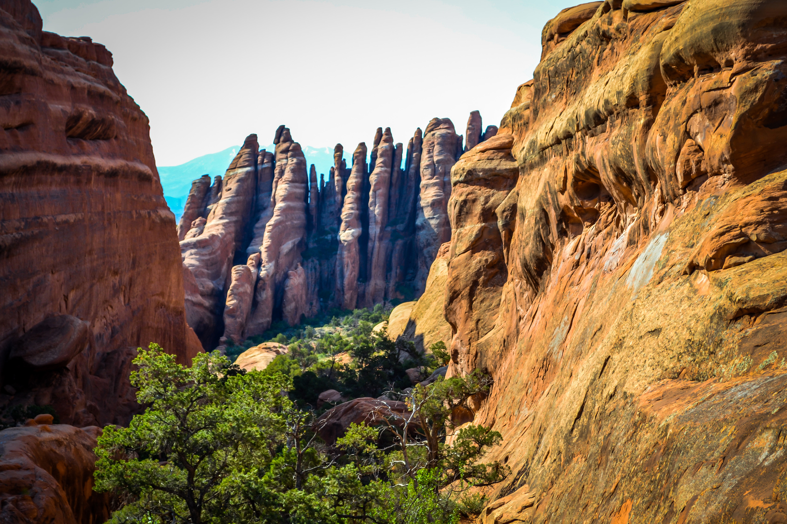 Kellogg - travel - NY Moab 2013-0142.jpg
