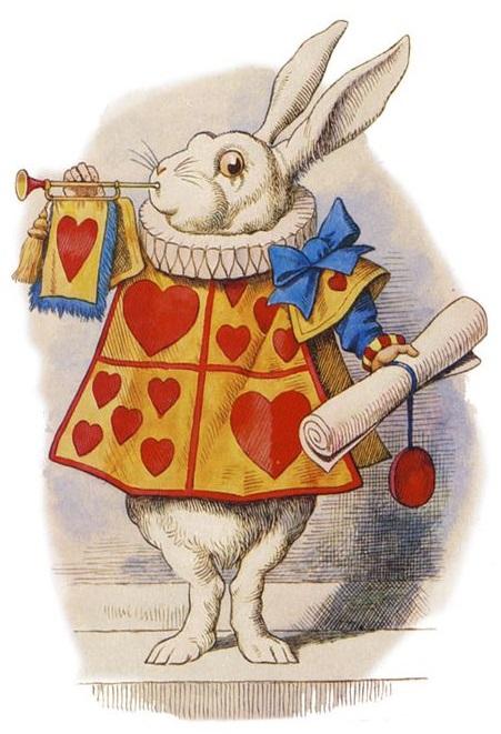 rabbit_451x661.jpg