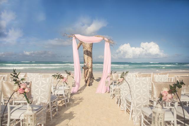 Driftwood Romance Ceremony - Pink 2.Jpg