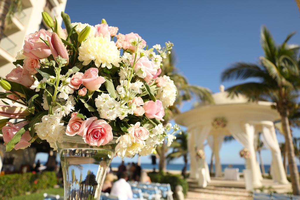 Hyatt Ziva Los Cabos Weddings 232A6315.Jpg