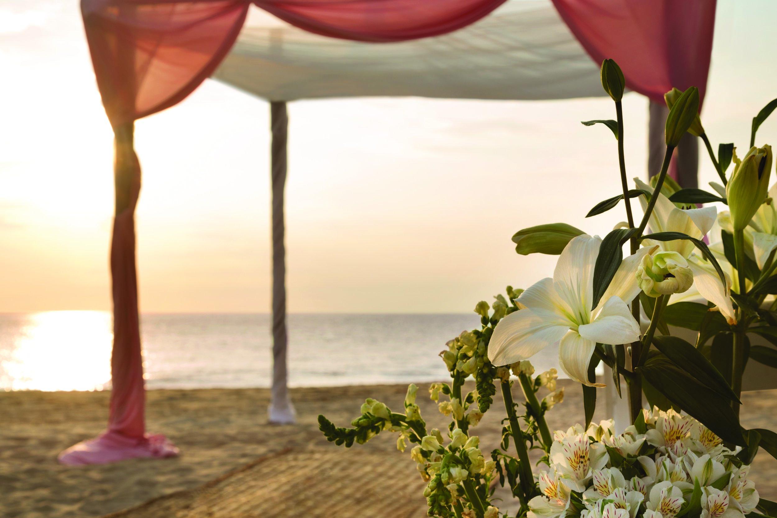 Hyatt-Ziva-Puerto-Vallarta-Wedding-Beach-Pink-Detailed.jpg