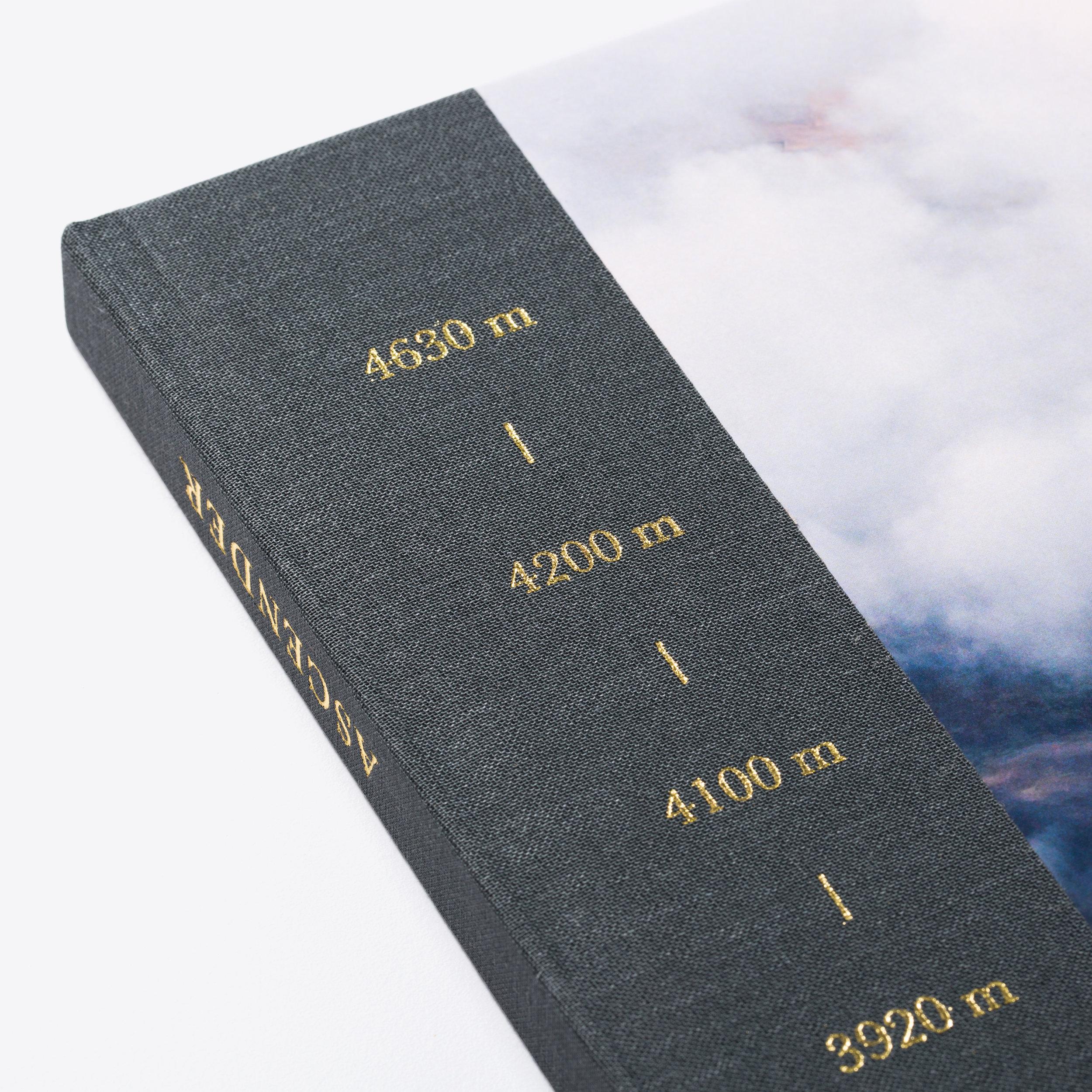 Ascender-021.jpg