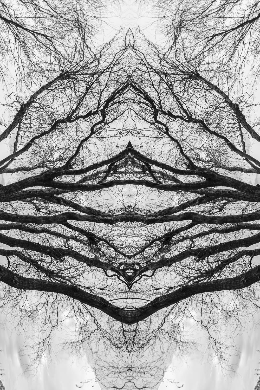 Untitled-2-Edit-4.jpg