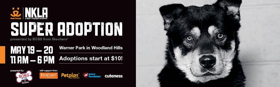 Woodland_Hills_California_Special_Event_Outdoor_ATM_Rental_Company.jpg