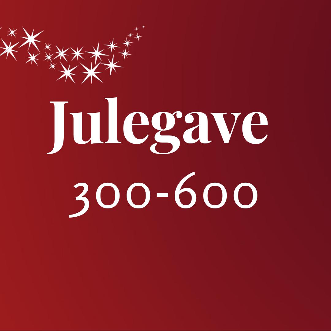 julegave300_600.png