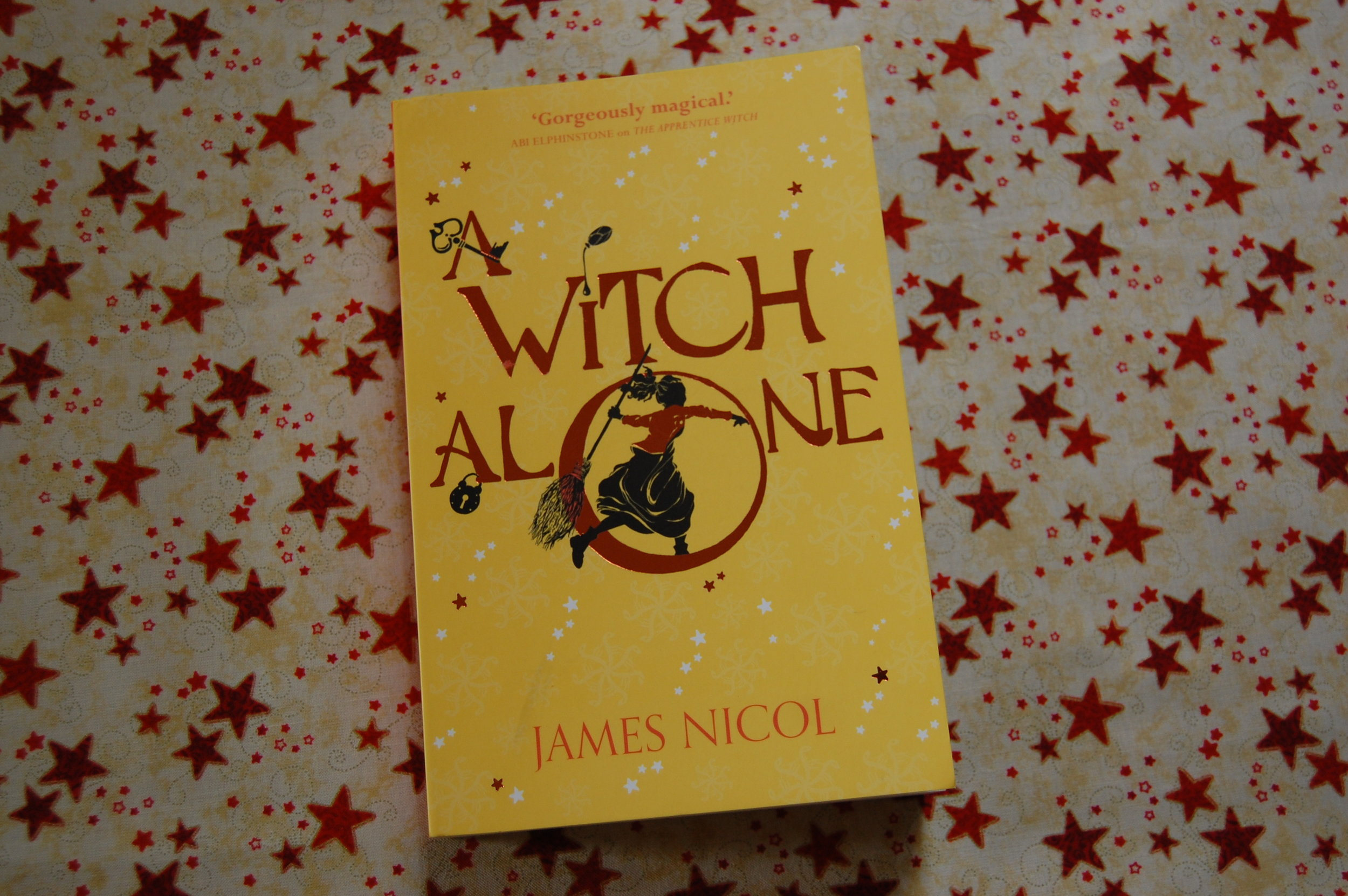 James Nicol — THE BOOK BLOG — North Somerset Teachers' Book Award