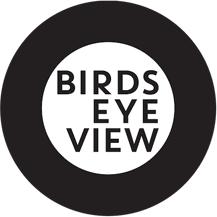 Birds Eye View.png