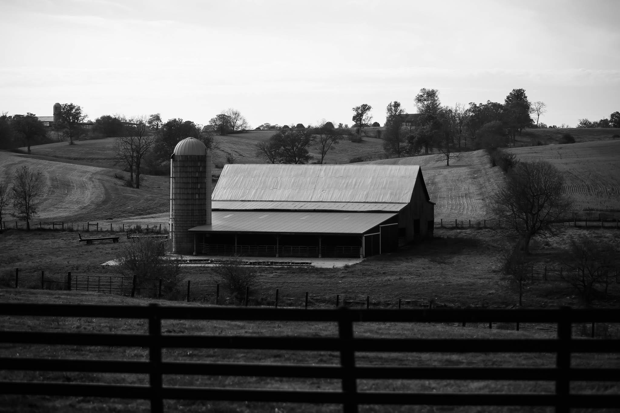 The Mucci Tobacco Farm