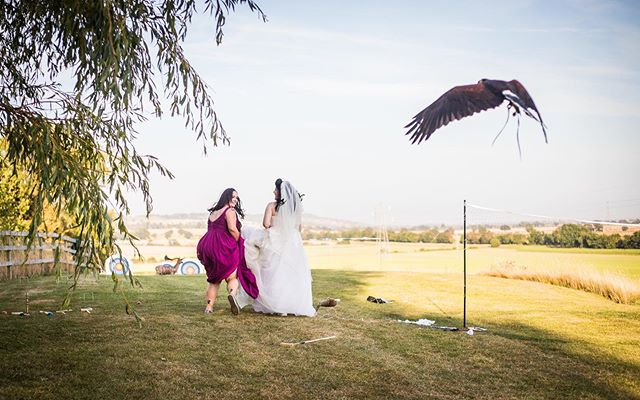 In the moment, when the sun is settling and you have a falconry display and are told to run 😂 . . . . . . . . . . . . #junebugweddings #shesaidyes #gettingmarriedkent #diywedding #chasingthelight #weddinginspo #lookslikefilm #bridetobe #radstorytellers #realwedding #loveintentionally #londonweddingphotographer #kentweddingphotographer #authenticlovestory #heywildweddings #kentishbride #weddingphotomag #rockmywedding #bridetobe2020 #kentwedding #allthefeels #instamoment #instawedding #love #neverstopexploring #wanderlust #bridebookhq #kentishbride #authenticweddingphotography #sussexweddingphotographer
