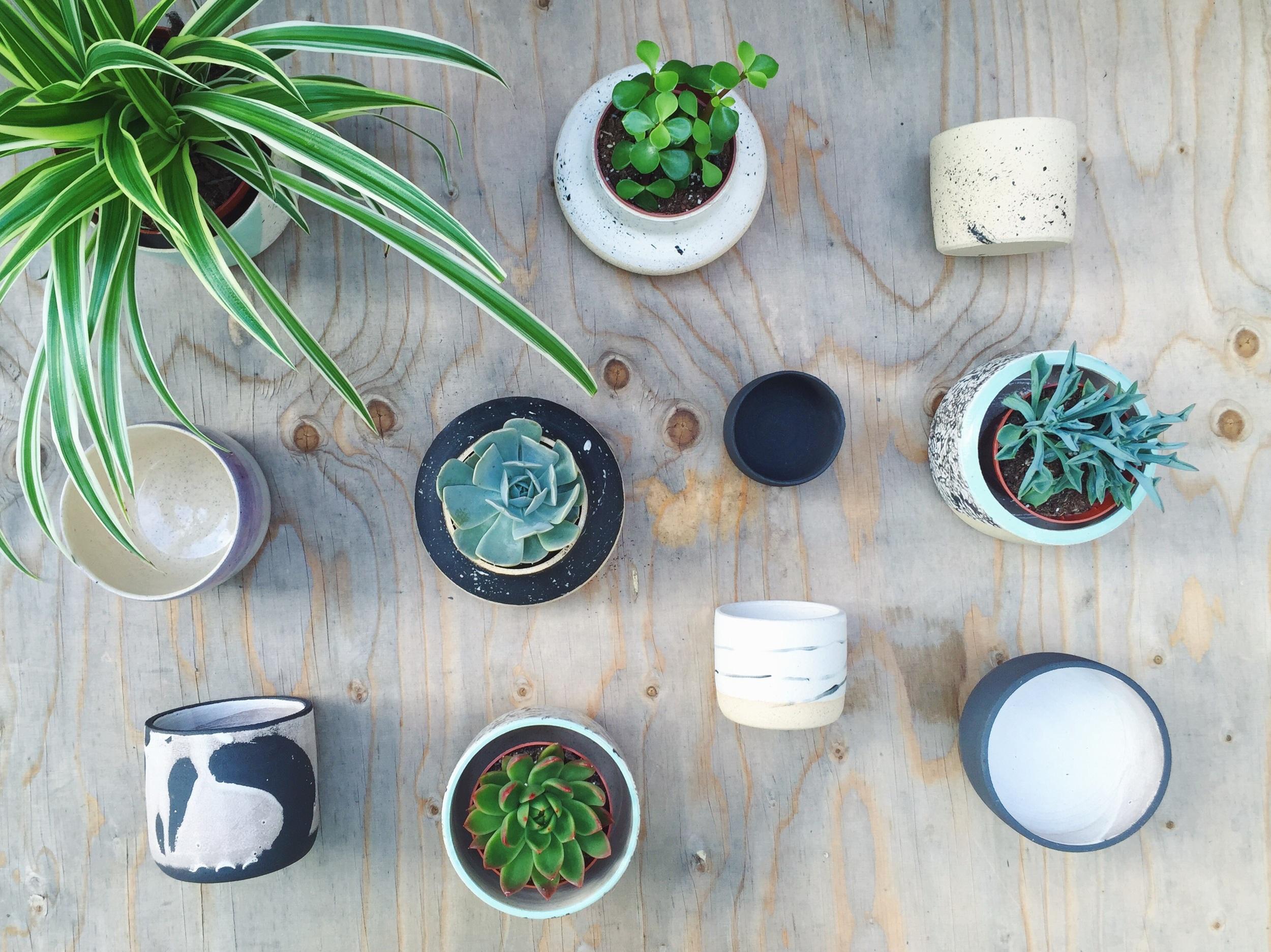 Tilly Hemingway Ceramics