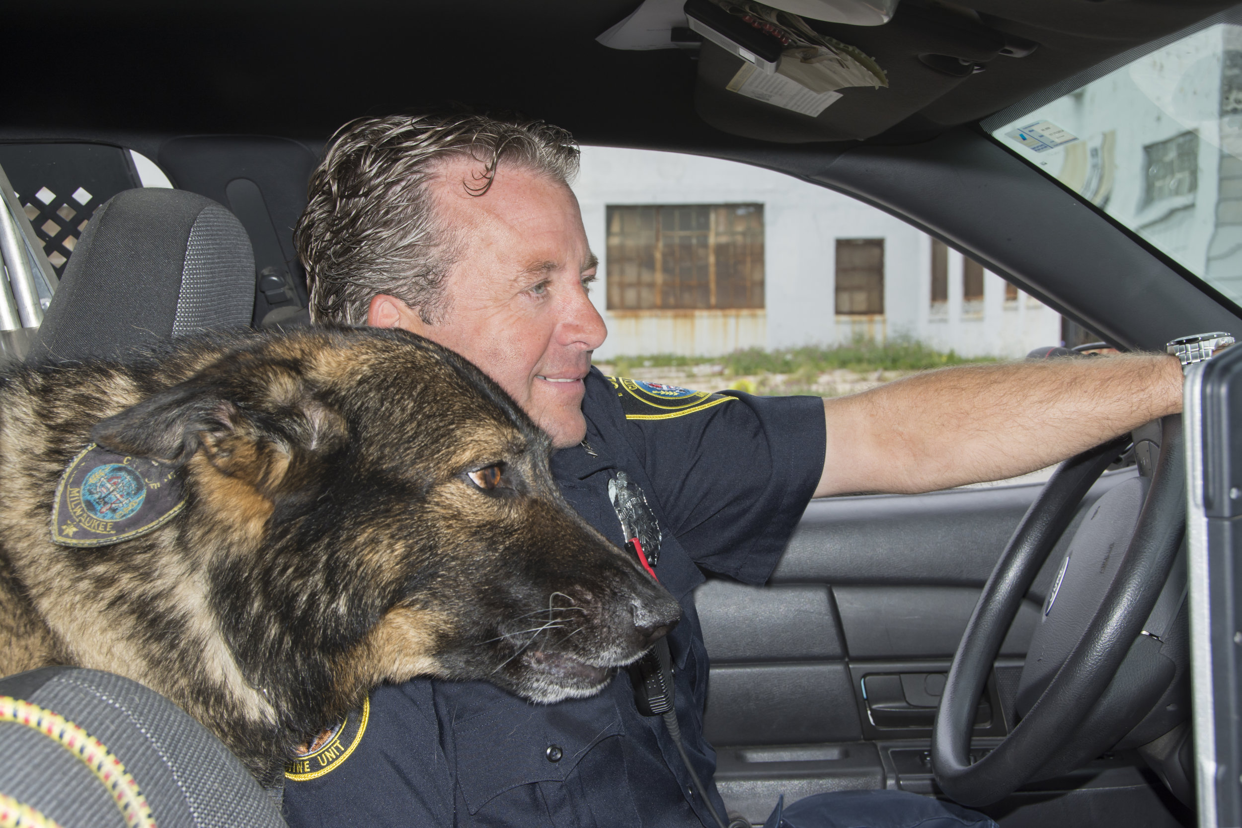 """In a dangerous Milwaukee neighborhood,I met the policeman, Todd Johnson, and his police dog, Dasty, who lives with Officer Johnson and his family. I asked, """"Is Dasty's job to sniff out drugs?"""" He said, """"Dasty has two jobs. Find drugs and chase the bad guys."""" I said, """"Has Dasty ever caught a bad guy?"""" He nodded. """"More bad guys than I can count. Dasty's 10 years old. He's seen a lot of action."""""""