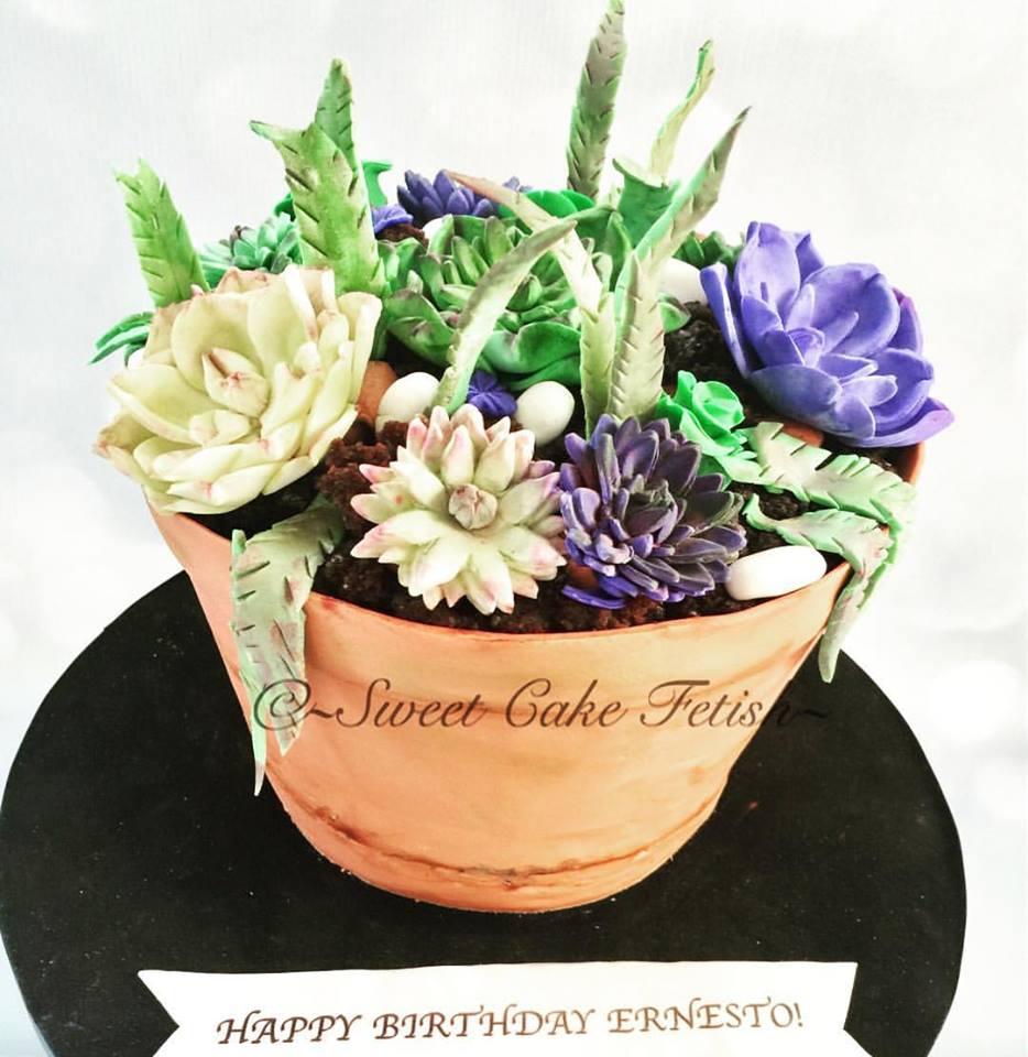 Succulent flower pot cake.jpg