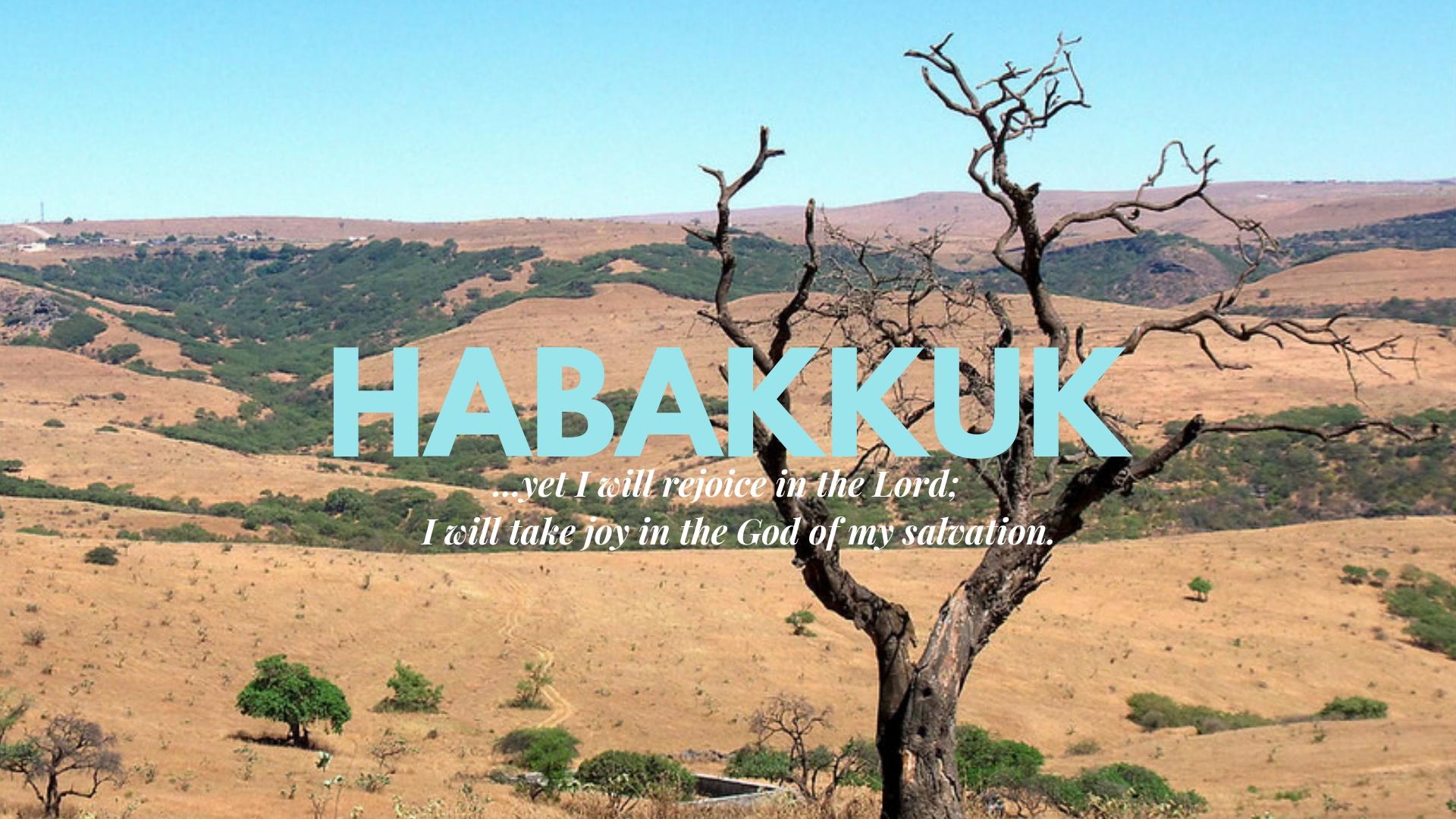 habakkuk large.jpg