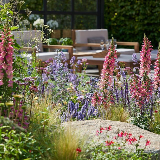 The tall Digitalis foxlight leading your eye to the garden room and our beautiful furniture made by Rob Horton. . . . @emhjoinery @hortusloci @_londonstone @sedumgreenroof @ced_stone_group @burnhamlandscaping