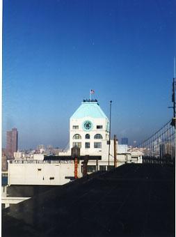 SAC NY Bklyn Main St long view.jpg
