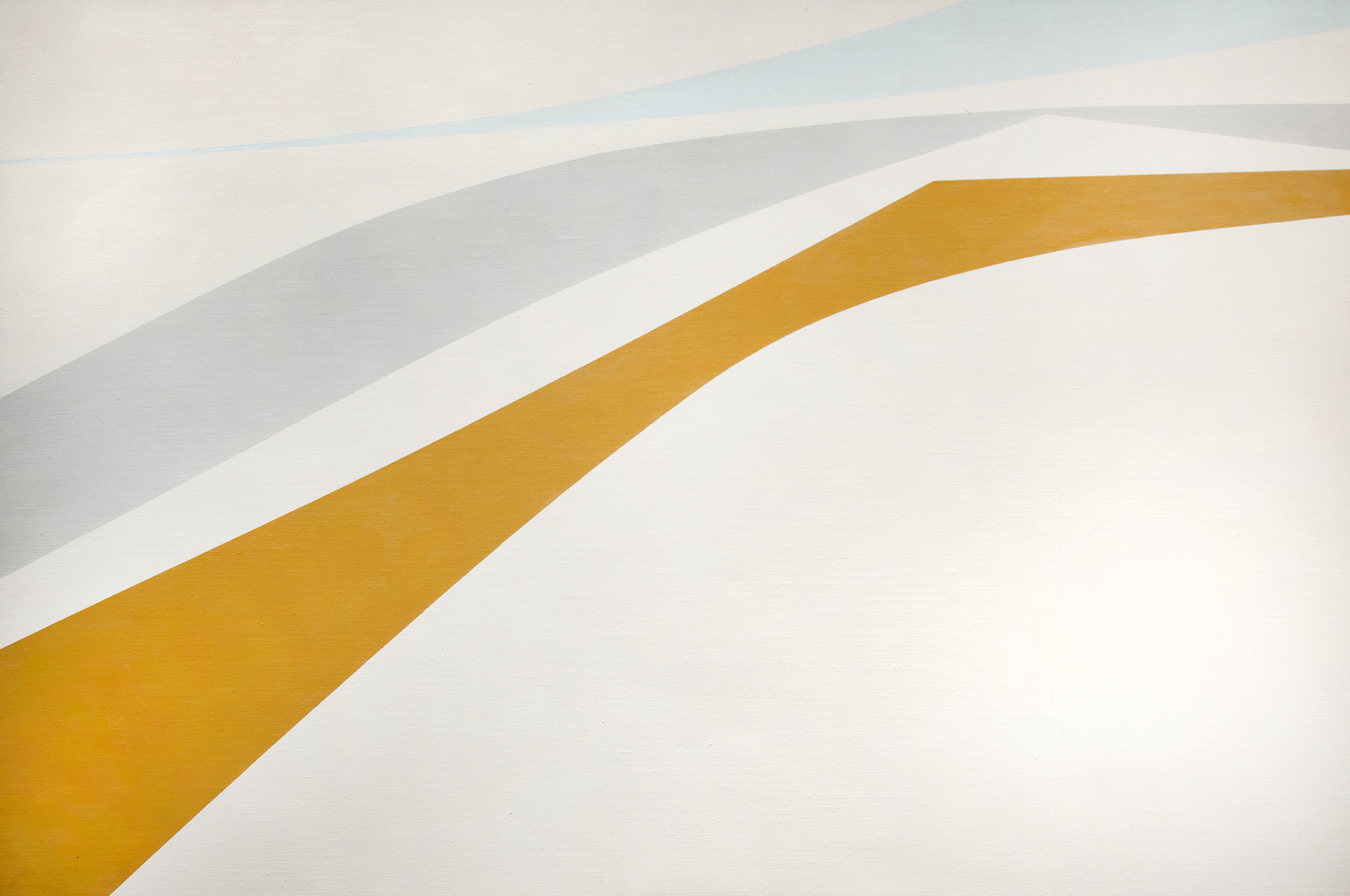 Windblown, 1964  , oil on canvas, 40 x 60 inches
