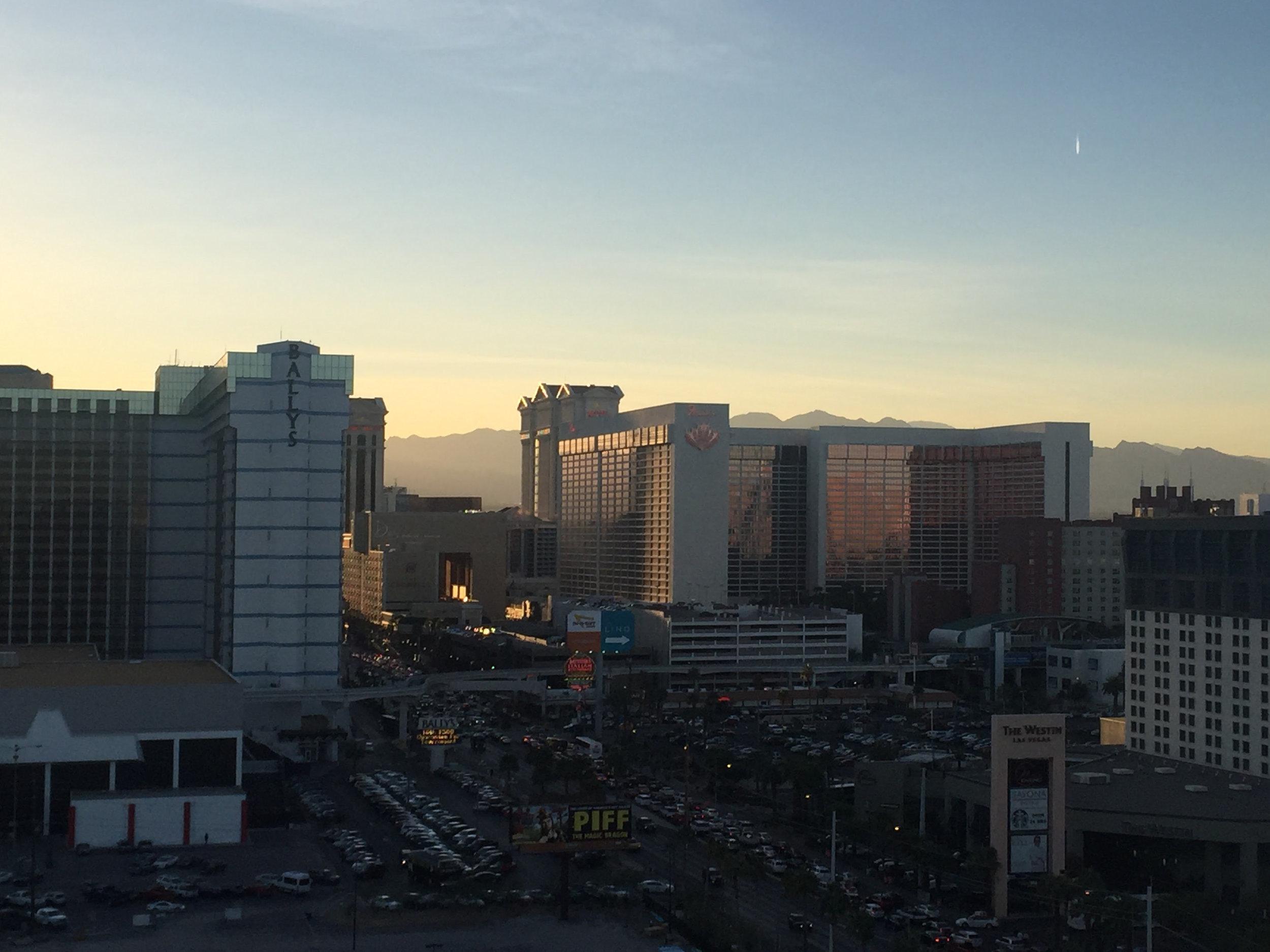 WVC-Vegas-View-DragonVet.jpg