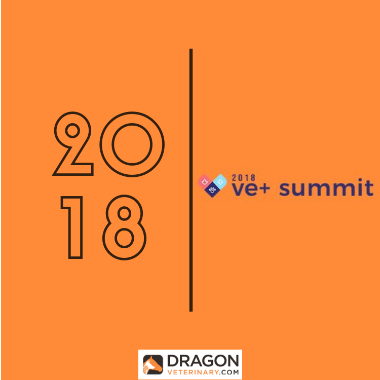 Ve+ summit 2018.png
