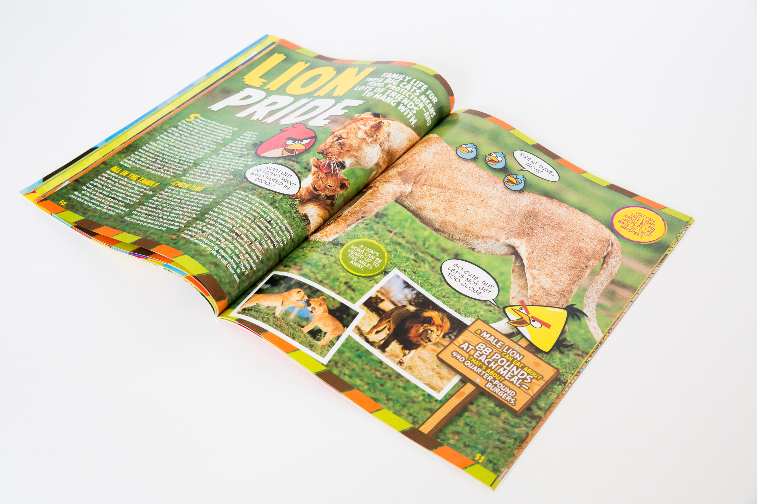 National Geographic KIDS Angry Birds Explore the World