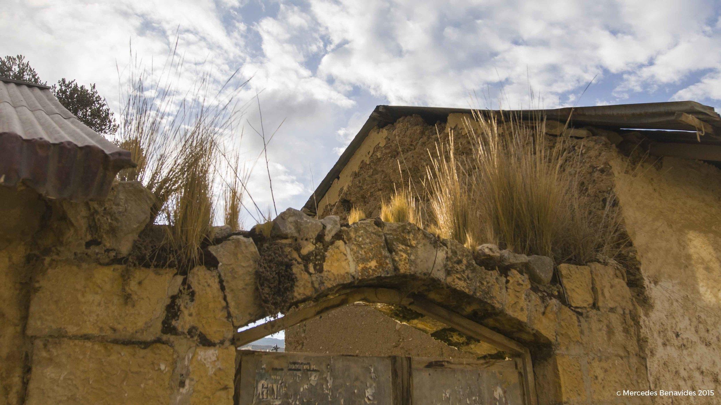 Portal y muro típico de Ondores, con Ichu encima. Construcción tapial.  Potal and wall typical of Ondores. Ichu grass on top. Tapial construction.
