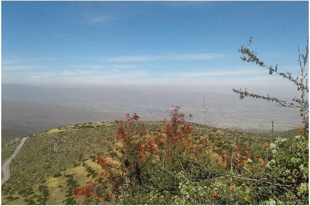 Tambo Cabrerías, Reserva Nacional de Salinas y Aguada Blanca, Arequipa. Vista de la ciudad de Arequipa. /  View of the city of Arequipa.