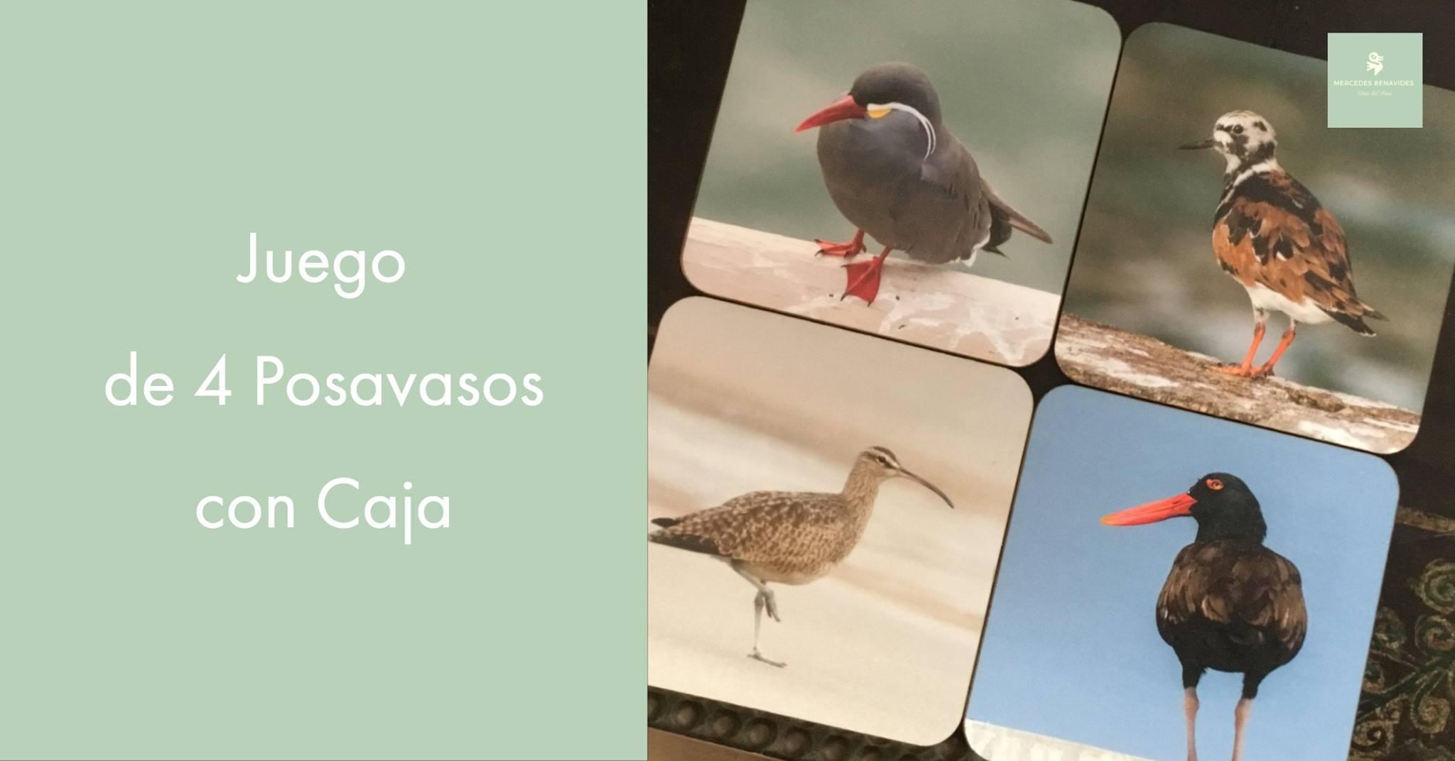 Juego de 4 Posa Vasos con Caja   Este juego de 4 Posa Vasos presenta aves que se encuentran fácilmente en las playas del Océano Pacífico del Perú y al mismo tiempo, son representativas de la diversidad de aves que tenemos en el Perú.  * Zarcillo ( Larosterna inca ) * Ostrero Negruzco ( Haematopus ater ) * Zarapito Trinador ( Numenius phaeopus ) * Vuelvepiedras Rojizo ( Arenaria interpres )  ¡Combina tu juego de té, café o bebidas frías, con este juego de posa vasos, con representaciones de la naturaleza del Perú, país mega-diverso!