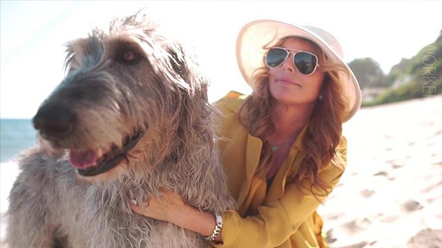 In honor of National Dog Day we wanted to share some of the fun, uplifting and inspiring content created by @lightworkers to celebrate their branded month of #DOGust. Featuring Roma Downey and her  beloved Ruby 🐶🐾❣️ . . . . #nationaldogday #dogust #lightworkers #romadowney