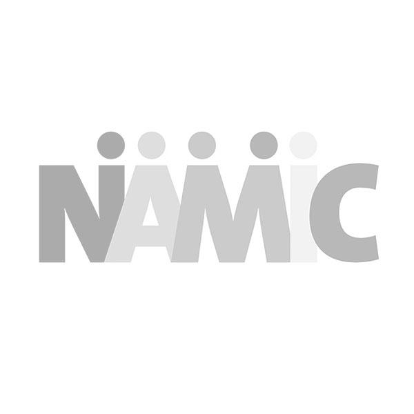 NAMIC.jpg