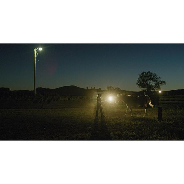 Ranchers in Montana.  #montana #ranchlife #ranching #horsesofinstagram #horse #shotonred @reddigitalcinema