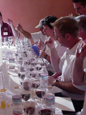 private wine tours napa private sommelier wine tour