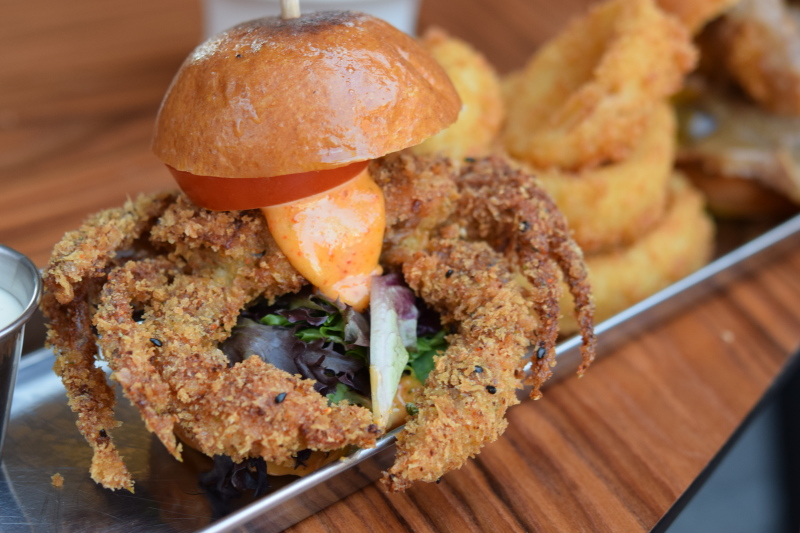 Hatch's Softshell Crab Slider and onion rings