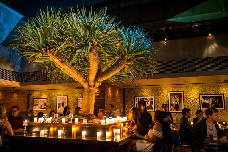 Mesa's elevated happy hour, along with their sexy lounge area, is the ultimate ending to any work day.