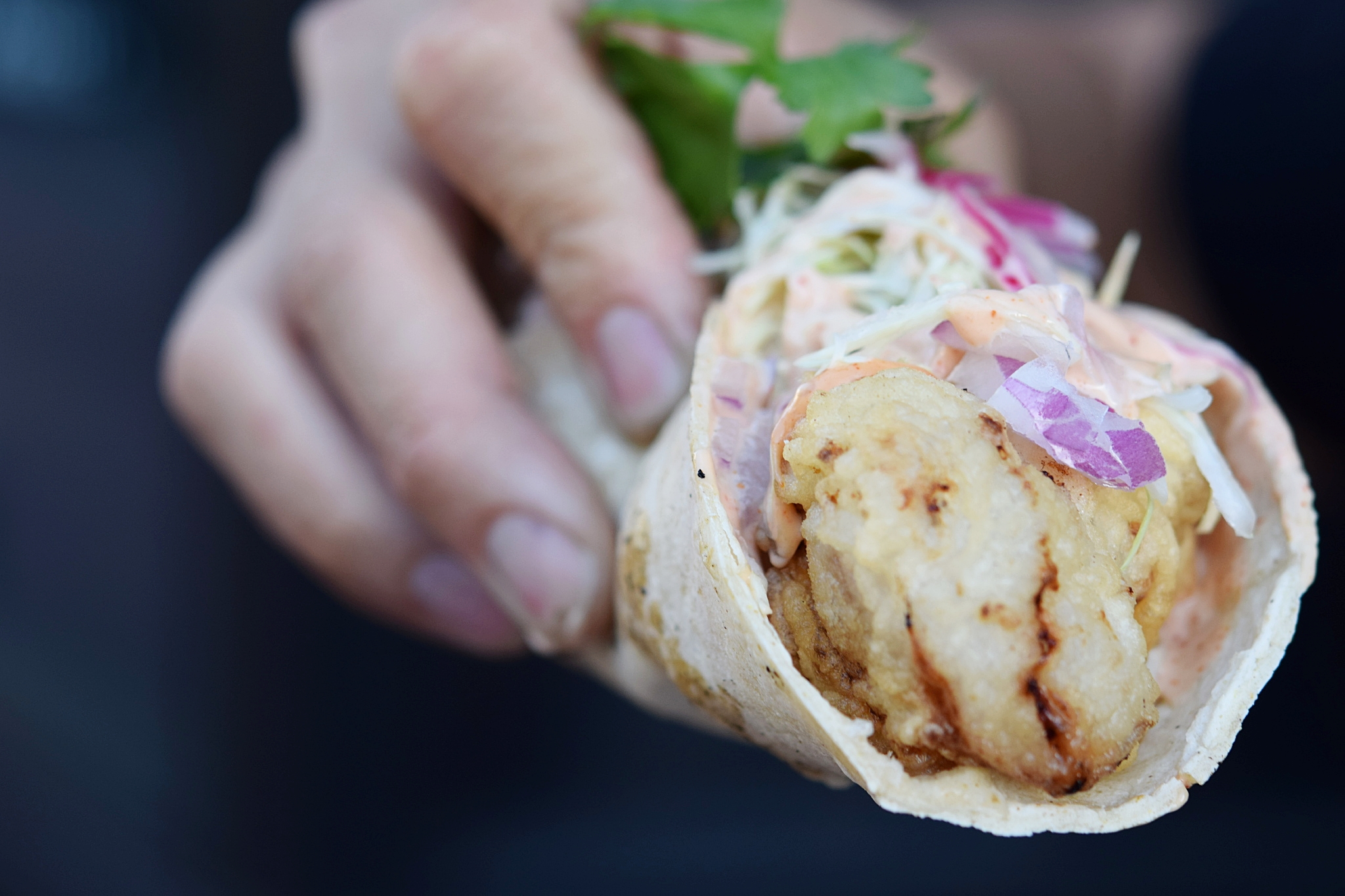Fresh Fish Taco | photo courtesy of 100eats