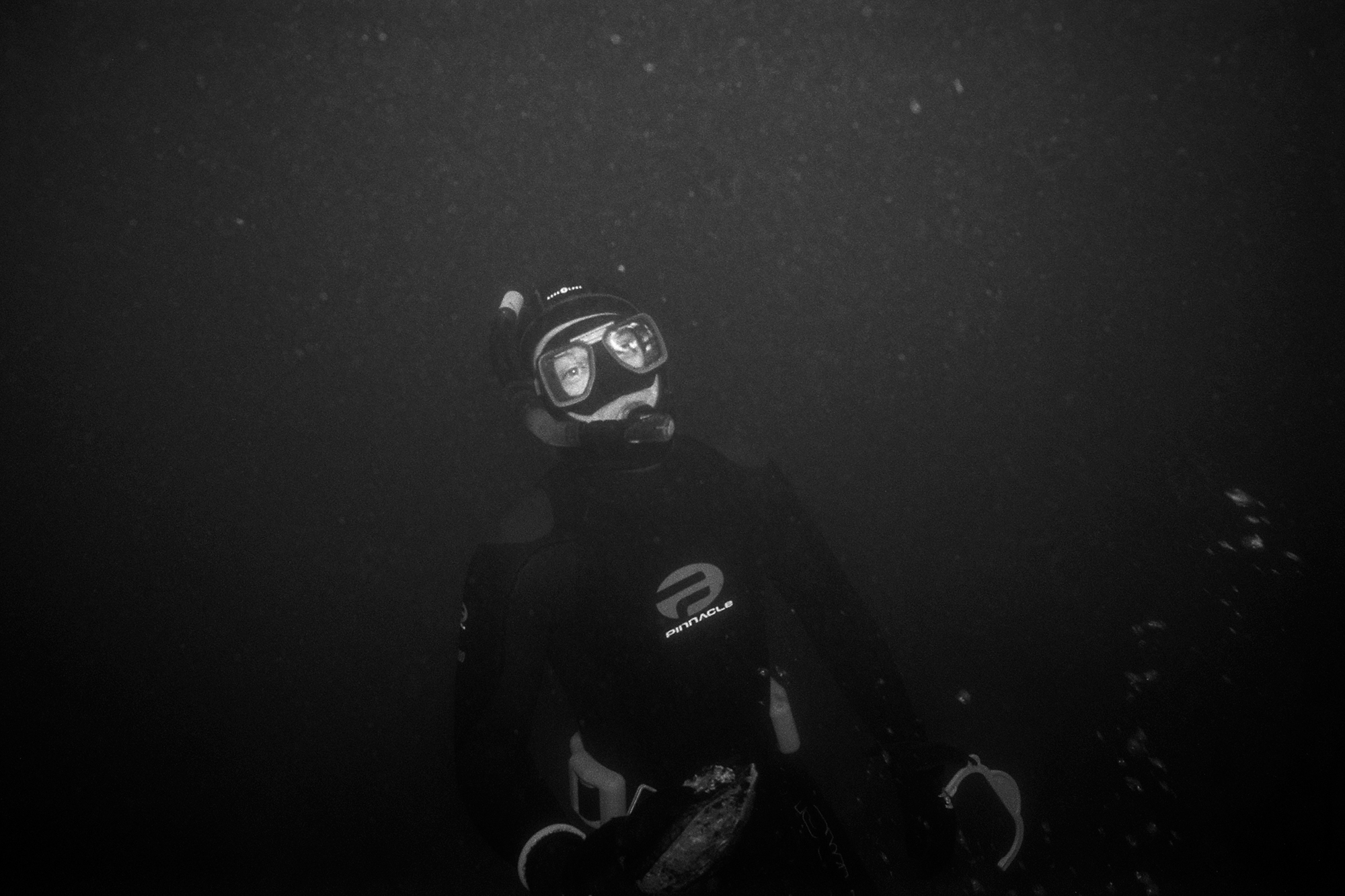 Abalone_dive_077.jpg