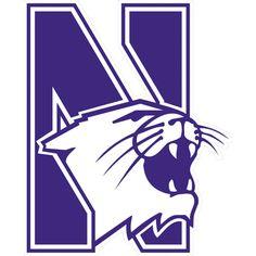 Northwestern University (DI)</a><strong>David Nikolic</strong>