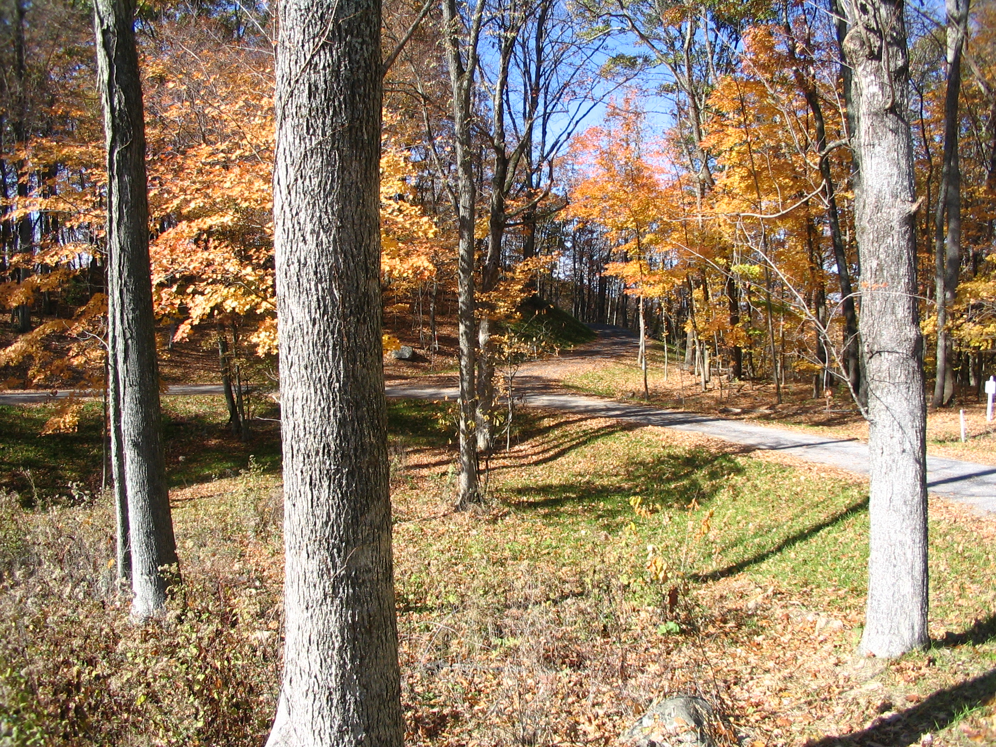 Lot 36 driveway approach off Falconry Ridge