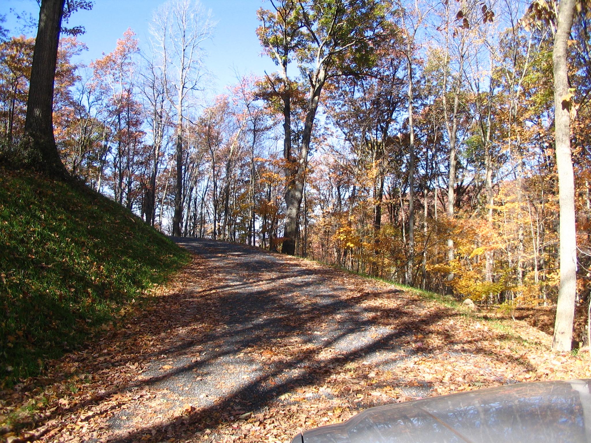 Driveway to Lot 36