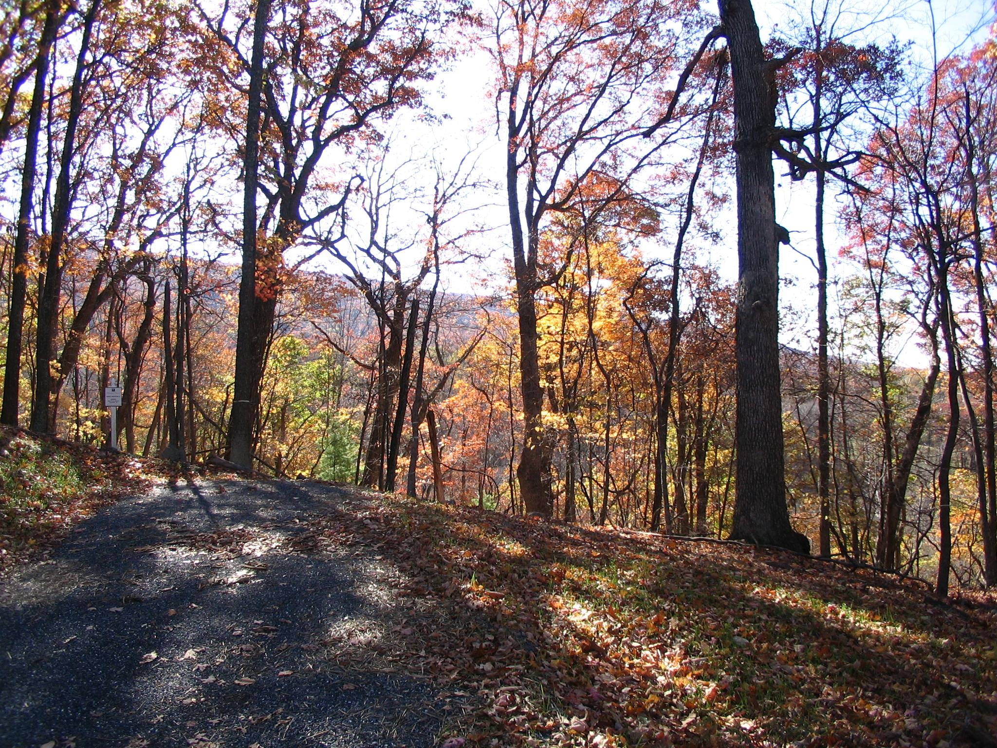 Driveway at Lot 36