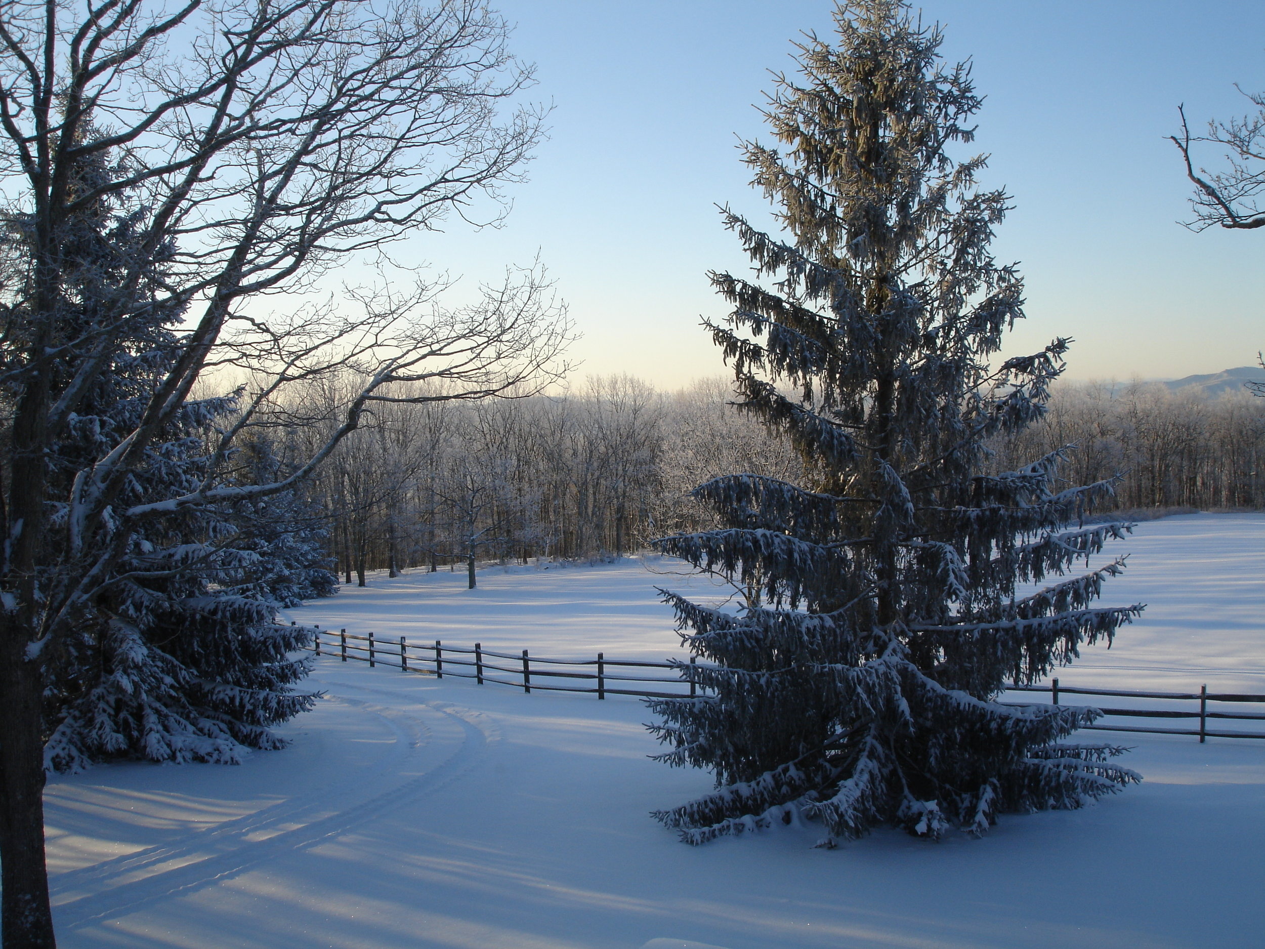 Winter Scene on the Farm