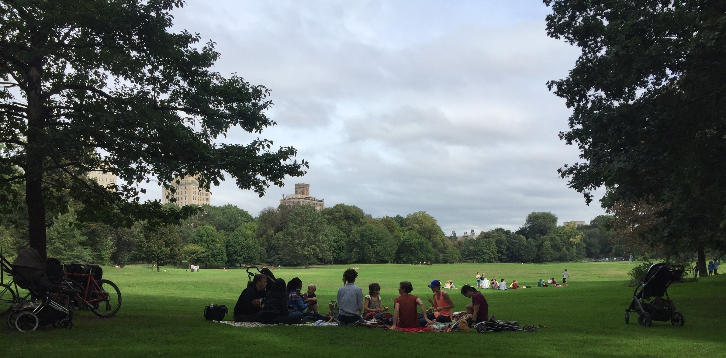 Summer classes are here! - Outdoor classes in Prospect Park begin June 11 with TWO summer sessions, totalling 11 weeks.Summer Session 1 begins June 11 and runs through July 27.Summer Session 2 begins August 13 and runs through September 7.There will be no class June 14 or 15.(Is there class today?)